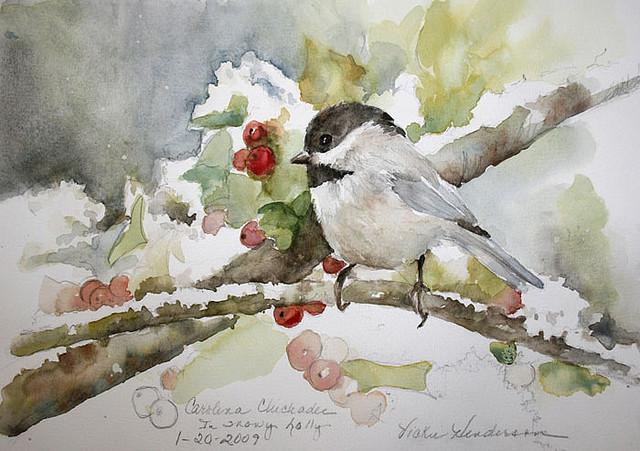 Featured Bird Blogger Of The Week