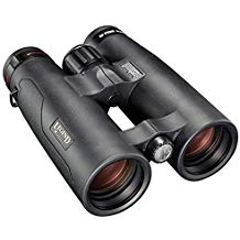 bushnell-binoculars