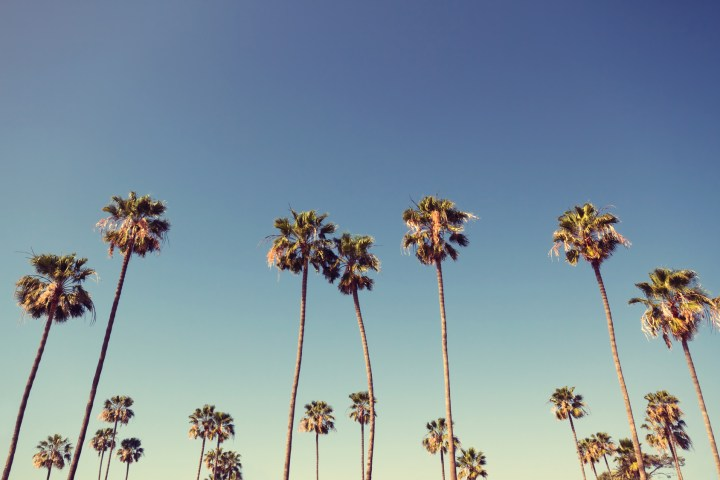 Playlist 100% California