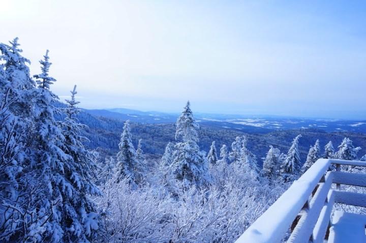 ski-sutton3