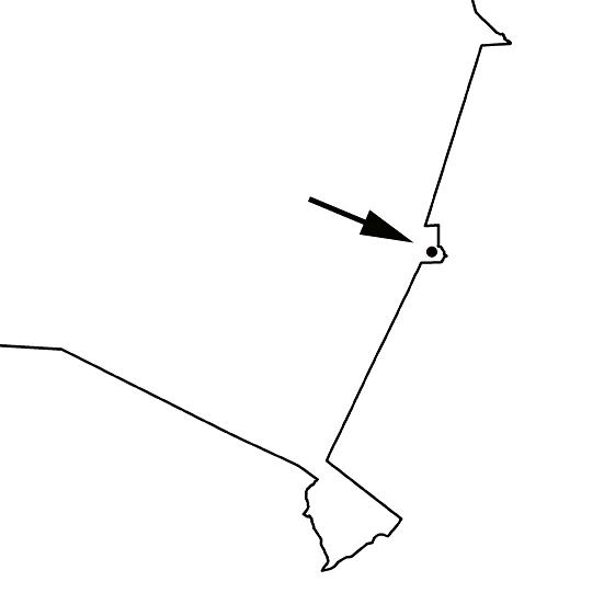 Primolius maracana