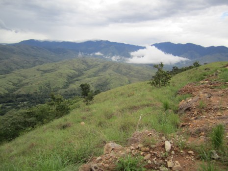 Alto Salitre grasslands above Buenas Aires, Costa Rica