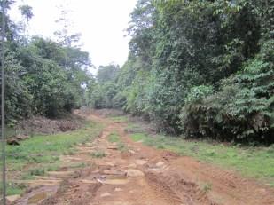 Road to El Plastico