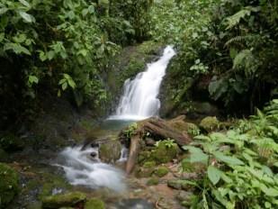 Waterfall at Mashpi-Amagusa Reserve