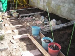 colette's garden 004