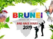 Brunei Bird Race Series
