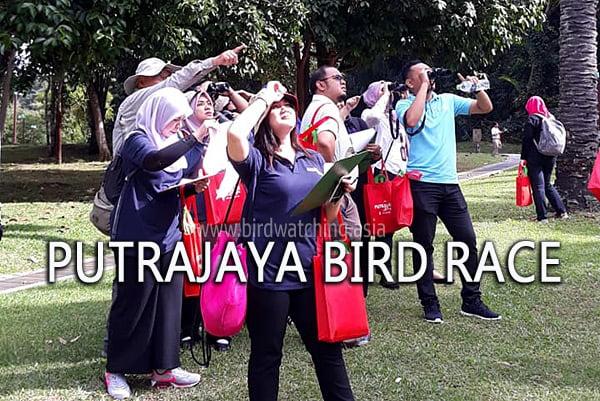 Putrajaya Bird Race