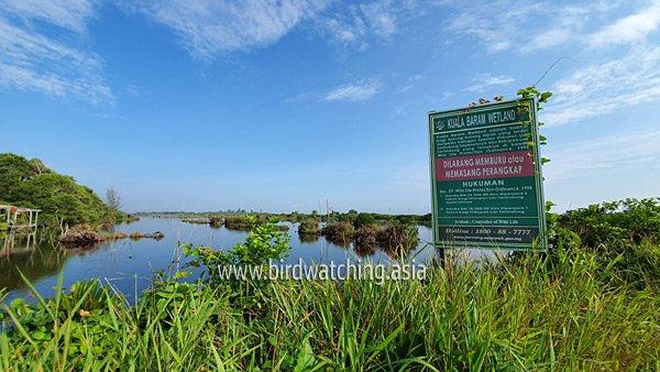 Wetlands Kuala Baram Miri