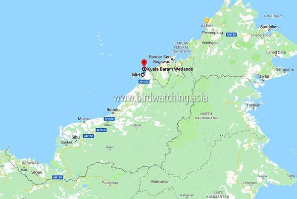 Where is Kuala Baram Wetlands