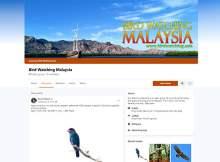 Facebook Bird Watching Malaysia