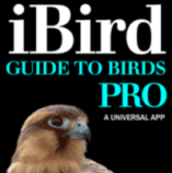 iBird Review App