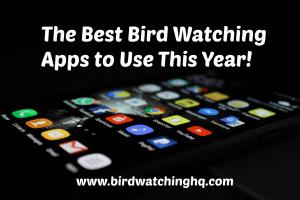 The Best Bird Birding Apps