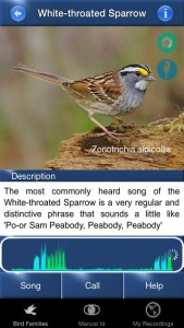 Best Bird Apps for Song ID