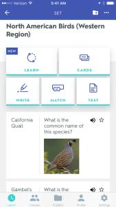 Favorite Birding Apps
