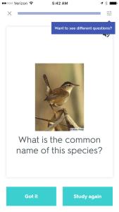 Favorite bird apps