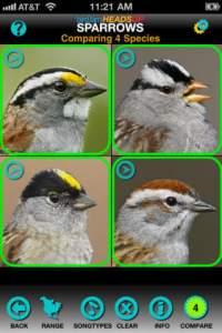 Sparrow Birding App