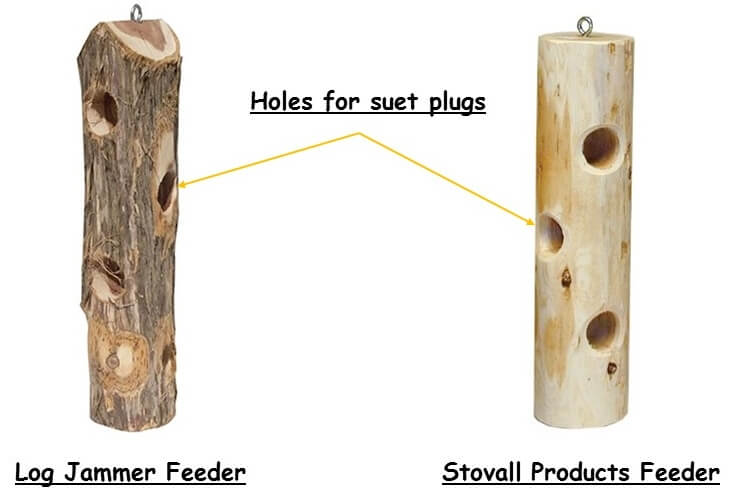 suet plug feeders for woodpeckers