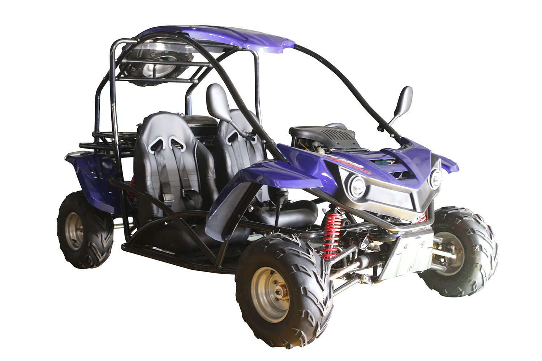 Cougar Cycle T Rex 125cc 2 Seat Go Kart Auto W Reverse