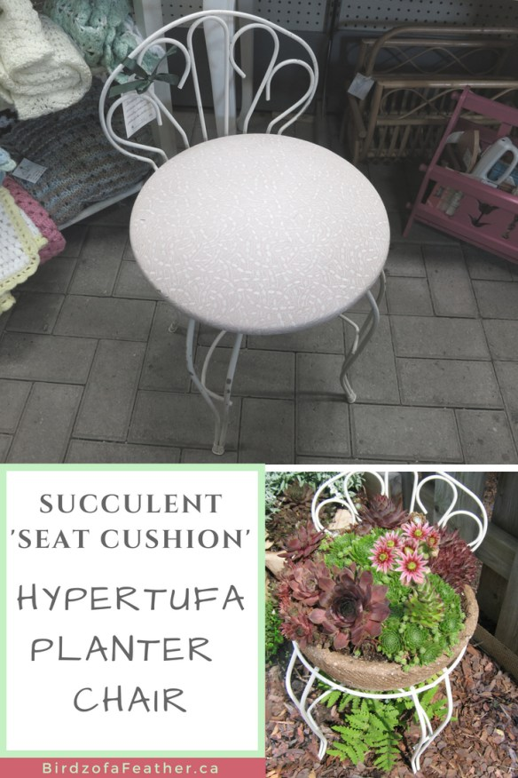 If you love embellishing your garden, you'll adore this upcycle! Birdz of a Feather | hypertufa projects | hypertufa planters | hypertufa recipe | hypertufa projects ideas | garden ideas | garden accessories | garden decor | garden decor diy | garden decor ideas | succulents | succulents garden | succulents diy | hypertufa chair | upcycle | upcycle ideas #hypertufa #succulents #gardenindeas #gardendecor #birdzofafeather.ca #diymojo