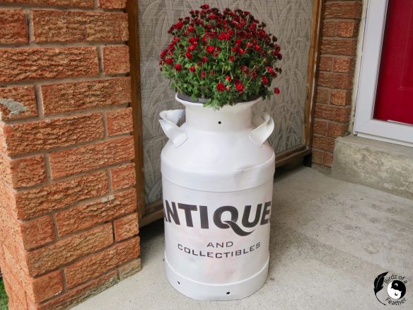 If milk can decor is on your bucket list, check out this milk can idea! Birdz of a Feather | milk can planter | painted milk cans ideas | painted milk cans diy | milk jug planter | large milk can decor | milk can decor front porch | milk can decor ideas | milk can stencils | how to paint a milk can | vintage milk cans decorating | milk can ideas | milk can decor outdoor | milk can fall decor | vintage milk can decor | vintage milk can ideas | funky junk stencils | funky junk stencils old signs
