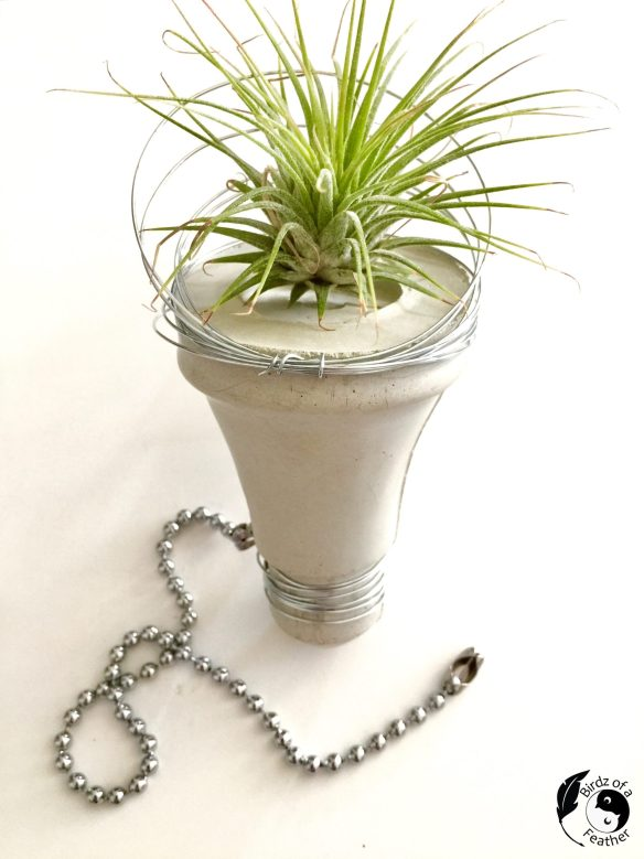 After learning how to make a cement planter, another 'bright idea' came along; a lightbulb moment! Birdz of a Feather | cement planter DIY | planter ideas indoors | planter ideas DIY | cement planter ideas | cement planters diy | cement crafts | cement DIY | succulent decor | succulent decor ideas | plant decor | plant decor DIY | planter decorating ideas | planter decor ideas | cement lightbulb | planter diy | planter diy indoor #DIYcement #DIYcementCrafts #cementCrafts #cementTips #diyPlanters