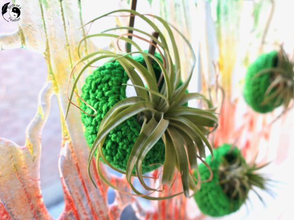 Air plant holders or pods, are great to display air plants anywhere you'd like to hang them. Birdz of a Feather | air plant display ideas | diy air plant display | unique air plant display | air plant display diy | air plant display diy simple | upcycling | upcycling ideas | upcycled air plant holder | air plant holder | air plant decor | air plant decor ideas | air plants diy | crochet plant holder | crochet plant holder pattern free | crochet air plant holder | crochet air plant holder pattern