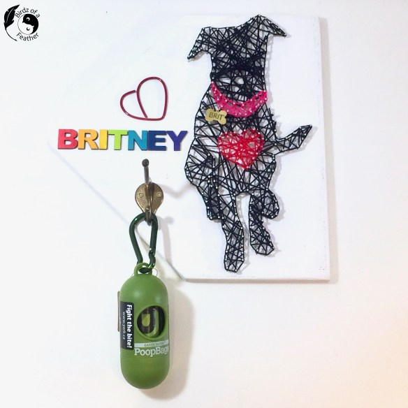 String art dog hangs on the wall with a bag dispenser hanging on the hook. Colourful letters spell out the dog's name.