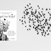 Vögel im Kopf: Geschichten aus dem Leben seelisch erkrankter Jugendlicher
