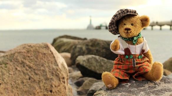 teddy-1814281_1920