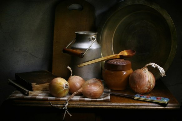 still-life-with-onions-4876410_1920