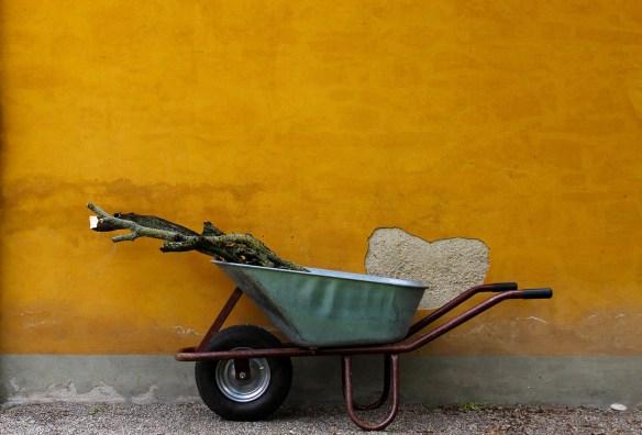 gardening-4181074_1920