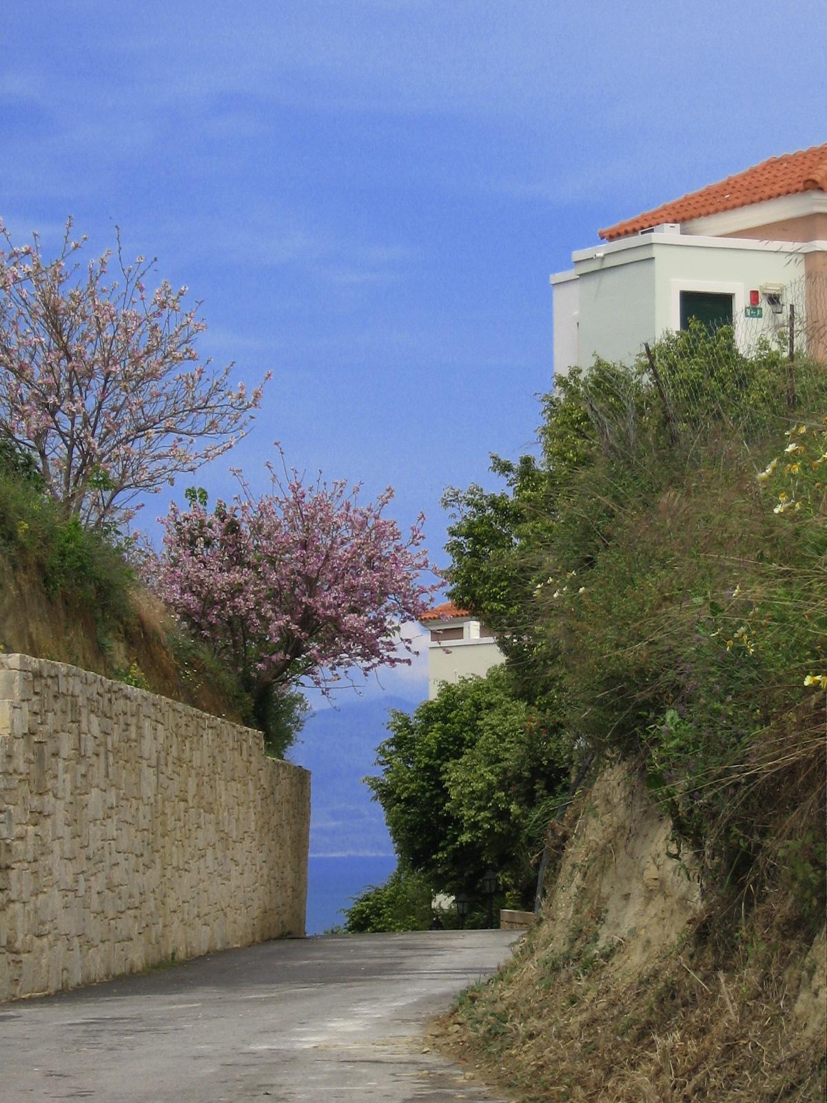 Vacker vy från en av mina långpromenader i Platanias