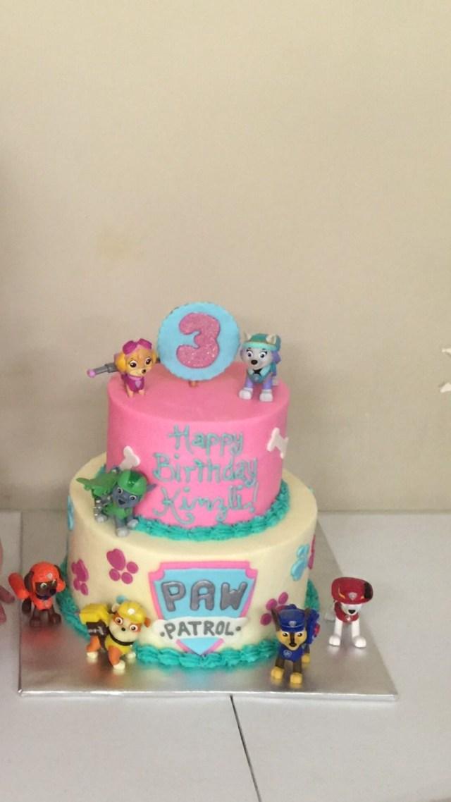 3Rd Birthday Cake Paw Patrol Birthday Cake For Girls Kinzlis 3rd Birthday