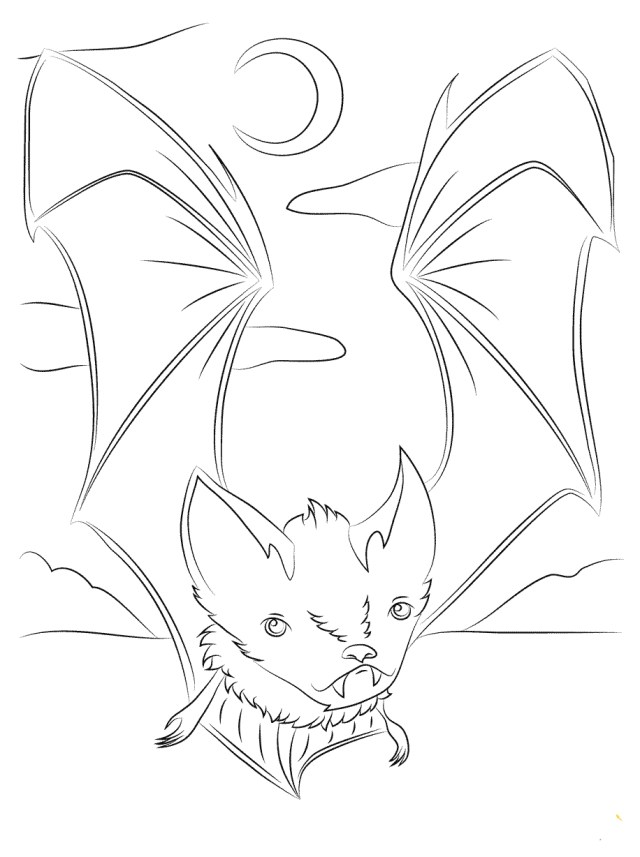 Bat Coloring Pages 30 Free Bat Coloring Pages Printable