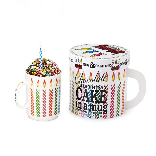 Birthday Cake In A Mug Birthday Cake In A Mug Birthday Gifts Cake In A Mug Uncommongoods