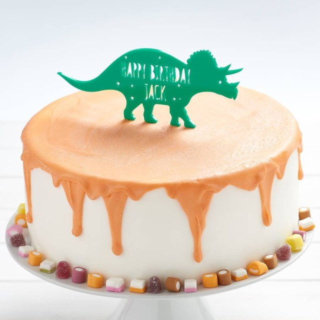 Dinosaur Birthday Cake Personalised T Rex Dinosaur Birthday Cake Topper Owl Otter