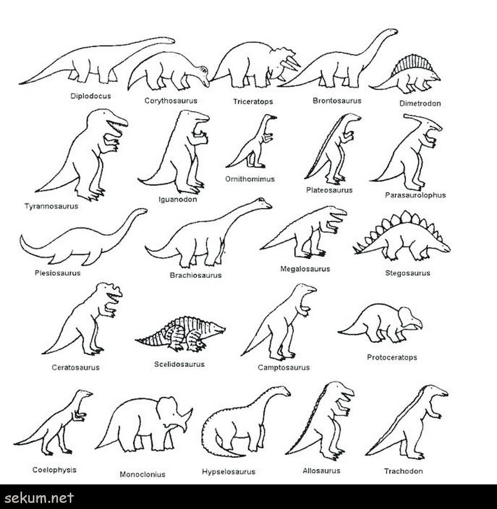 Dinosaurs for kids : Brachiosaur family - Dinosaurs Kids Coloring ... | 993x969