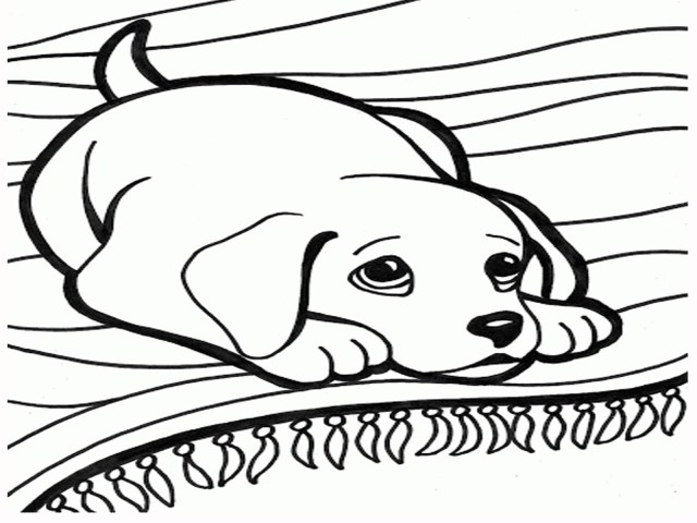Dog And Cat Coloring Pages New Coloring Pages Dogs And Cats Dog Cat Refrence Of 8 Futurama