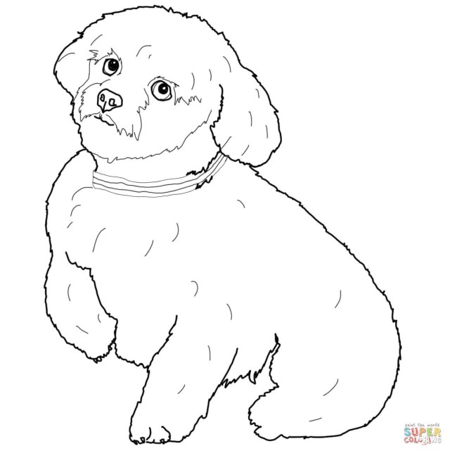Dog Coloring Page Dogs Coloring Pages Free Coloring Pages