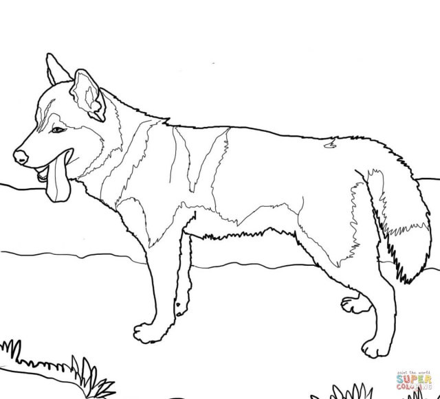 Dog Coloring Page Siberian Husky Dog Coloring Page Free Printable Coloring Pages