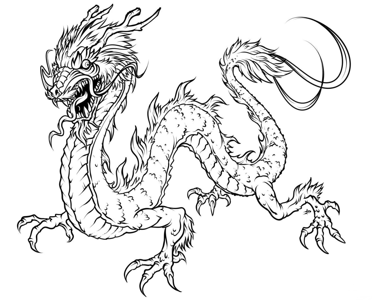 Dragon Coloring Pages For Adults Dragon Adult Coloring Books Unique Photos Free Printable Dragon Birijus Com