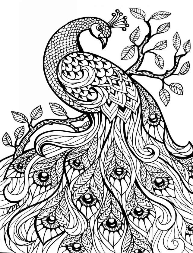 Awesome Photo Of Hard Coloring Pages Birijus Com