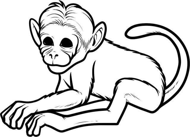 Monkey Coloring Pages Free Pictures Of Cartoon Monkeys For Kids Download Free Clip Art