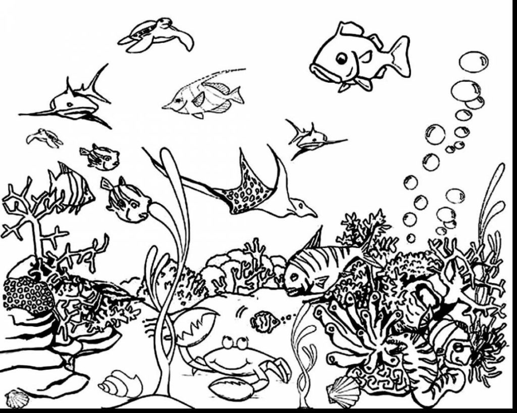 58 Sea Animals Coloring Pages Pdf For Free