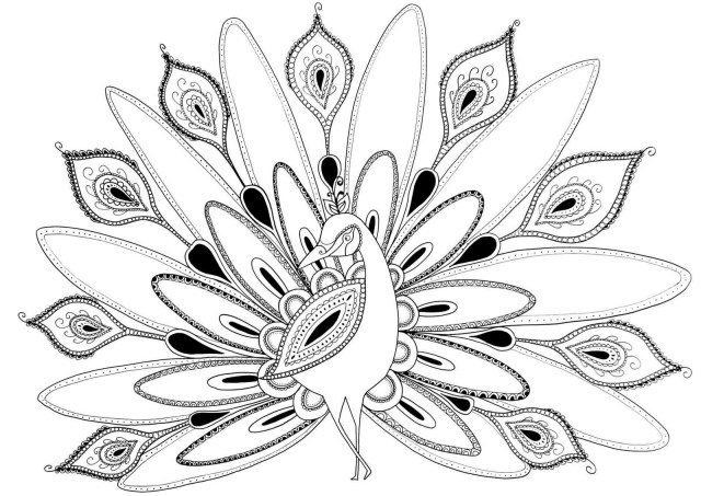 Peacock Coloring Pages Peacock Coloring Book 5h7k Peacock Coloring Pages Images Coloring