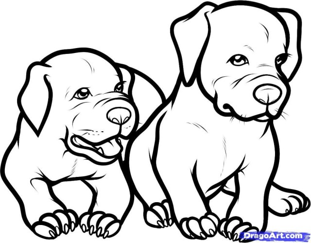 Pitbull Coloring Pages Inspirational Pitbull Dog Coloring Pages Viranculture