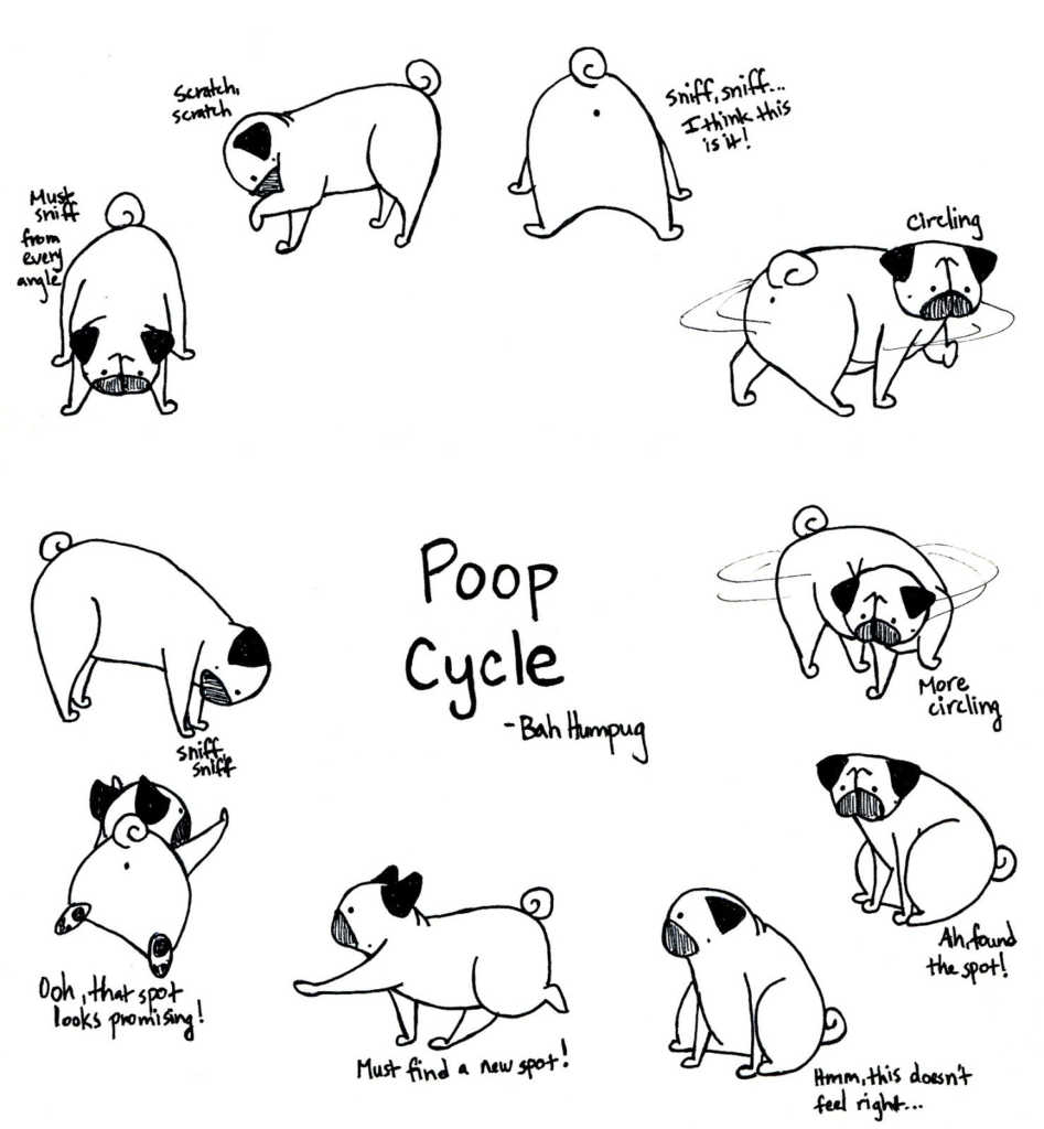 Pug Coloring Pages Best Of Easy Cute Pug Coloring Pages Design Great Collection Birijus Com