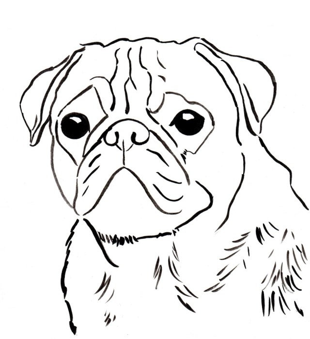 Pug Coloring Pages Free Pug Coloring Page To Download And Print