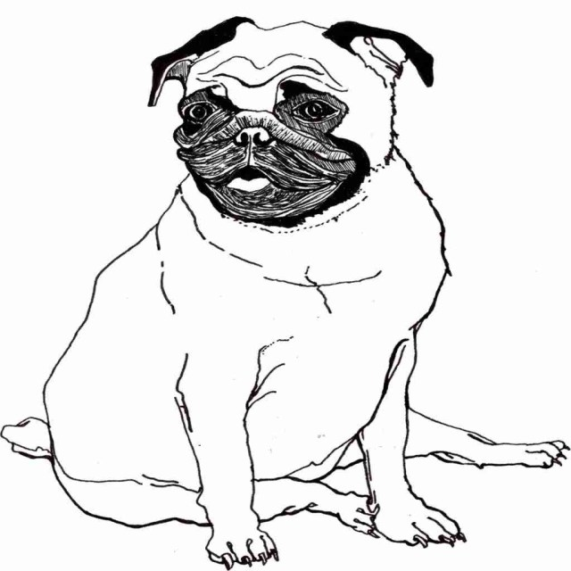 23 Beautiful Picture Of Pug Coloring Pages Birijus Com