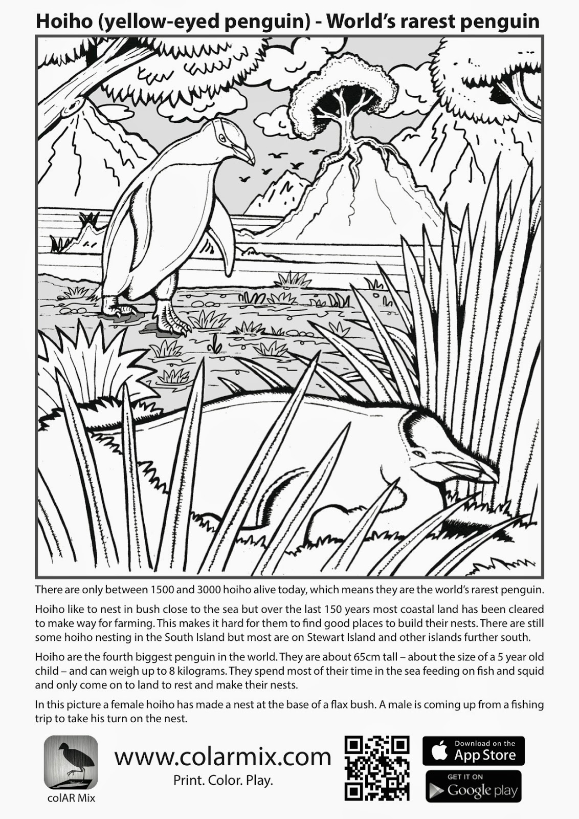 quiver coloring pages pictures of quiver coloring page